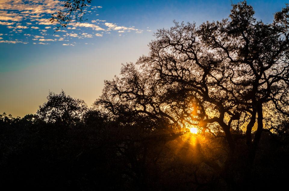 paisagem sunset blog post artigo sol